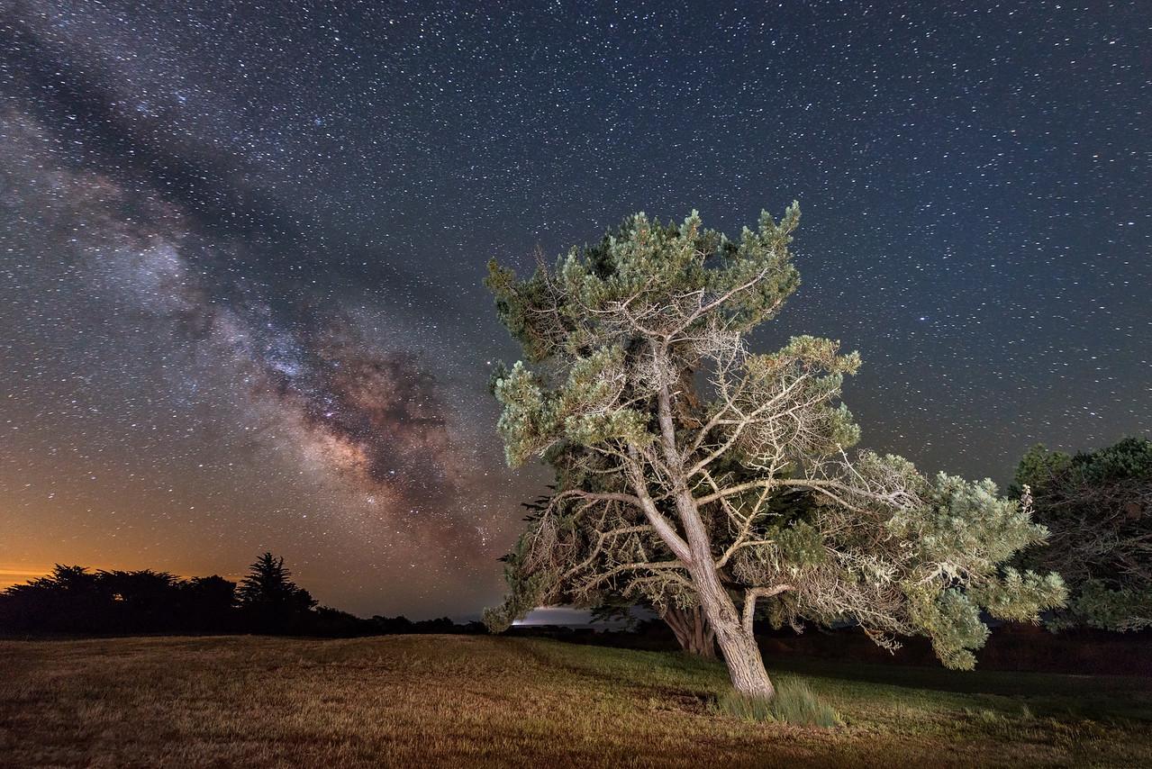 Evening Milky Way, Sea Ranch, California