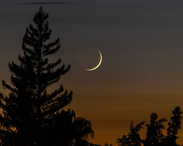 Summer Evening Crescent Moon 1
