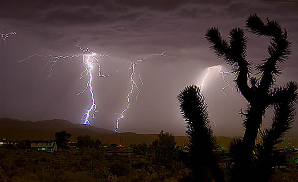 Night in Joshua Tree lightning