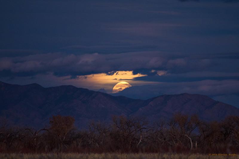 Super Moon Peeking Out