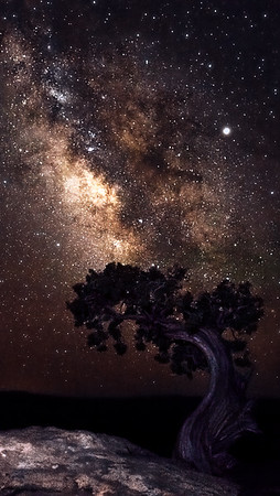Deadhorse Point Milkyway