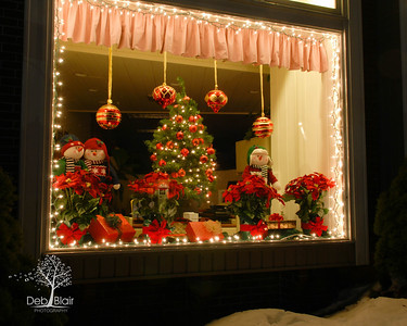Window Display at Bellows Nichols Insurance Agency in Peterborough, NH 2013