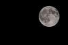 7-31-15 Blue Moon 1
