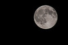 7-31-15 Blue Moon 2