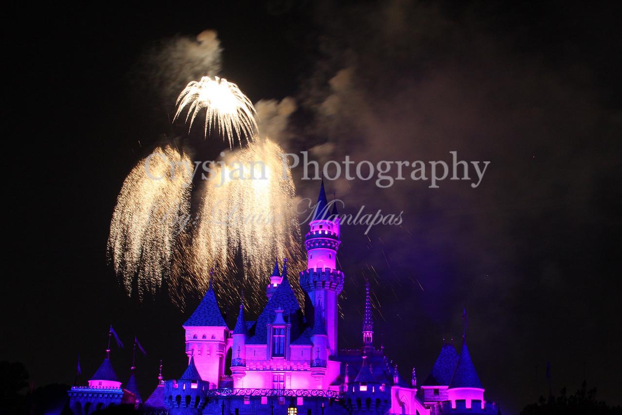 Fireworks, 2008; Summer; Night Shot; Long Exposure; Night Lights; Disney; Mickey Mouse; Disneyland
