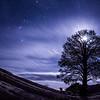 Lone Pine Night