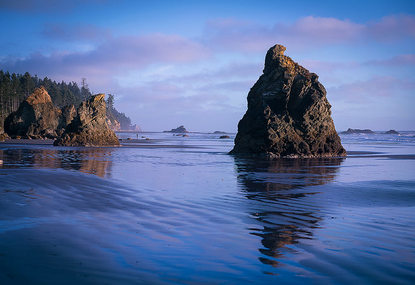 Sunset on the Coast - Olympic National Park, Washington
