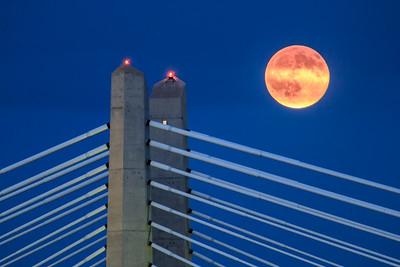 Full moon rising over Portland's Tillicum Crossing bridge.