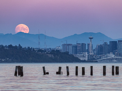 It's that time of the month again.... Nearly-full moon rising over Seattle and the Cascade Mountains tonight. Distances? Dock pilings: 150 yards, downtown Seattle: 7 miles, mountains: 30 miles, moon: 238,000 miles.  Now you know!