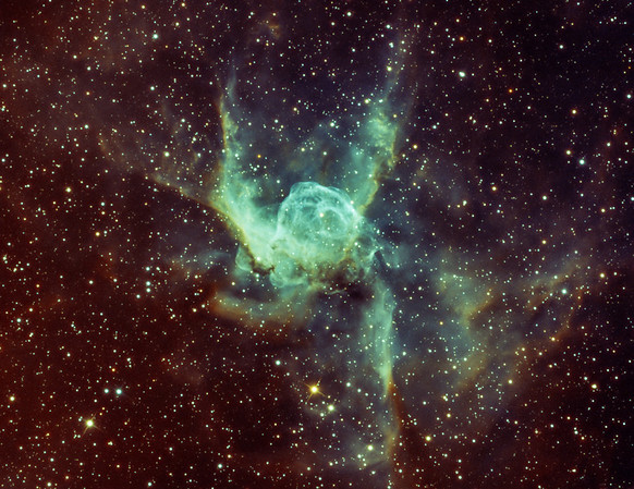 Thors Helmet in Narrowband