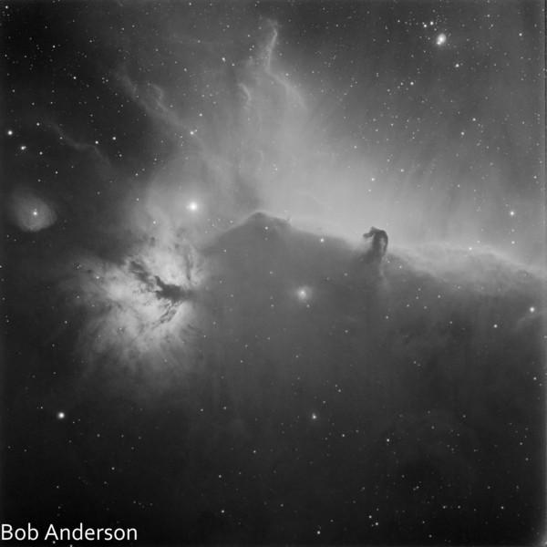 Flame and Horsehead Nebula's