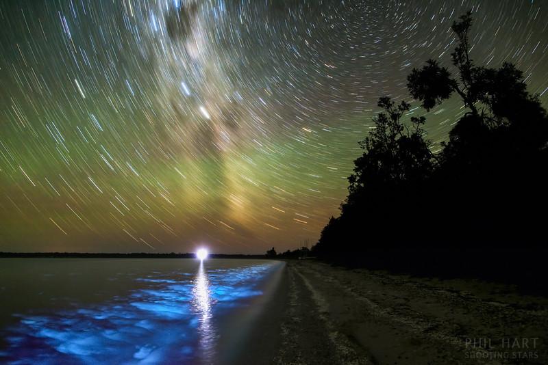 Lake Victoria Star Trails and Bioluminescence