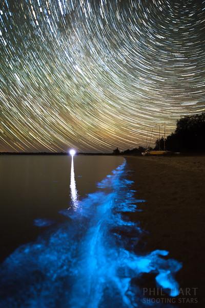 Lake Victoria Bioluminescence and Star Trails