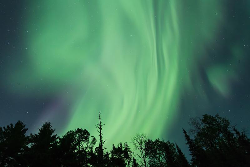 Explosion of Green <br /> McFarland Lake <br /> Arrowhead Trail <br /> Hovland, Minnesota <br /> (5II2-16277)