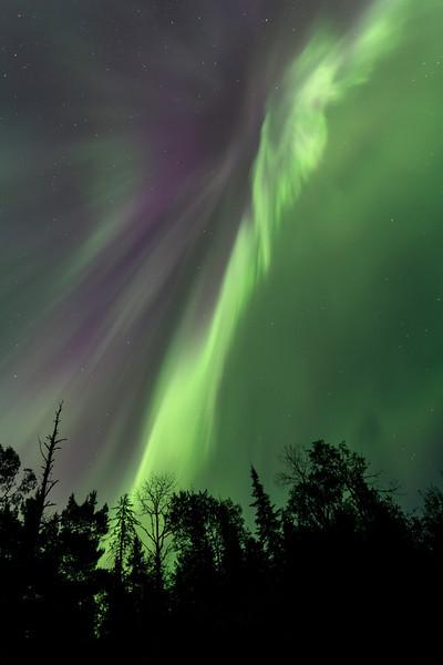 Northern Lights above McFarland Lake <br /> McFarland Lake <br /> Arrowhead Trail <br /> Hovland, Minnesota <br /> (5II2-16285)