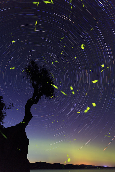 Lightning Bugs and the Northern Lights <br /> <br /> Grand Portage Indian Reservation <br /> Grand Portage, Minnesota <br /> (5II2-00802)
