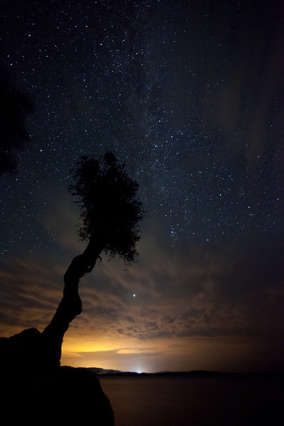 Spirit Tree and the Milky Way <br /> <br /> Grand Portage Indian Reservation <br /> Grand Portage, Minnesota <br /> (5II-17151)