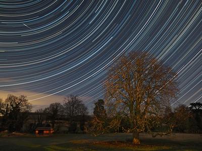 Moonlit Stars