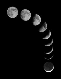 Moon Combo
