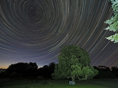 Summer Star Trail