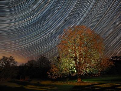 April Stars