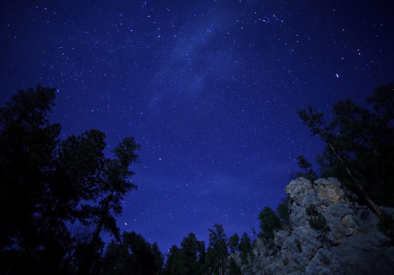 Picnic Area<br /> <br /> Custer State Park, South Dakota<br /> (5II-07955)
