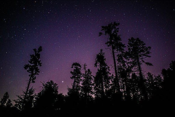 Starlit Night: Black Rock Forest NY