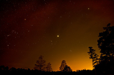 Night Sky at Laura S Walker State Park