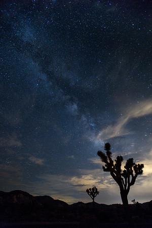 Milky Way | Joshua Tree National Park | California
