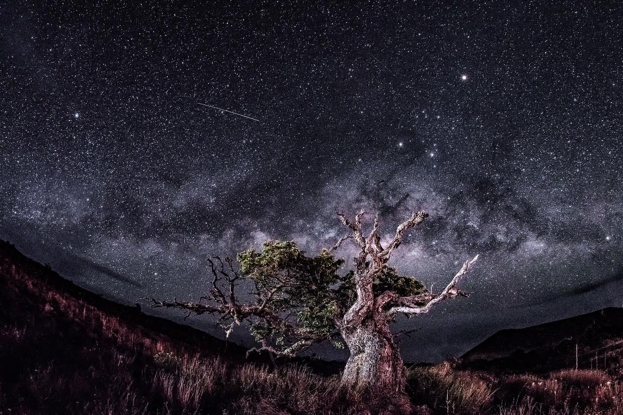 Mauna Kea meteor.