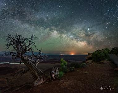 Dead Horse Milky Way