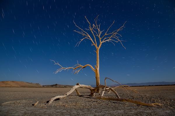 Star trails | Salton Sea | California