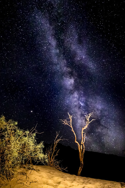 River of Stars @ Death Valley