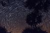 NightSky-KissimmeePrairieStateParkFl-3-21-17-SJS-009
