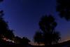NightSky-KissimmeePrairieStateParkFl-3-21-17-SJS-002