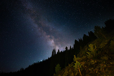 The Galactic Center over the woodlands of Lake Tahoe