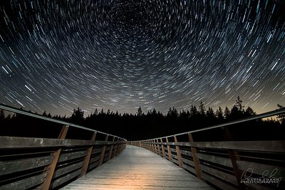 Star Trails at the Kinsol Trestle