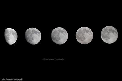 Moon Phase Pics