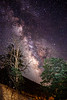 milky way 071818_0012-14_e