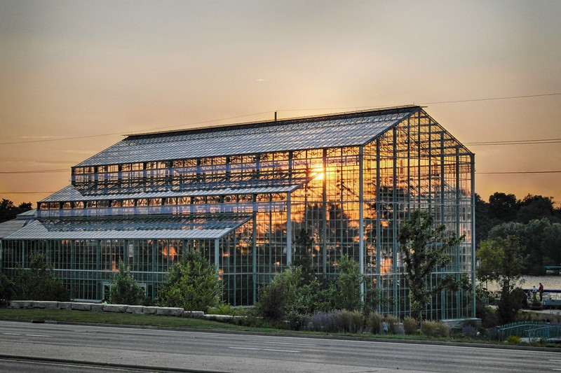 Sunset through the greenhouse