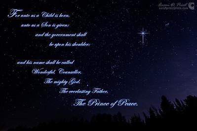 2012-12-14-103779 Christmas