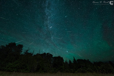 2015 Perseid Meteor Shower & Constellations