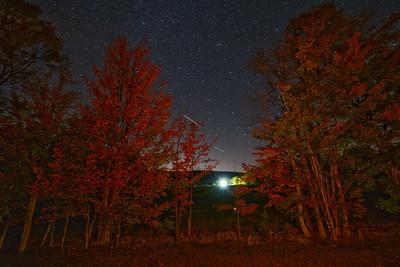 Night scene with Autumn trees