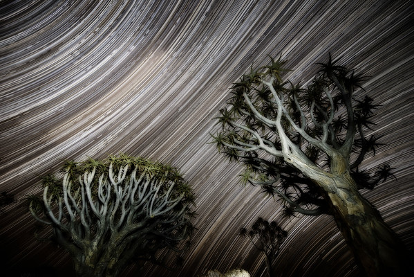 Star Trails Over Namibia
