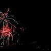 Fireworks-104