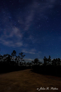 Everglades Milky Way 1
