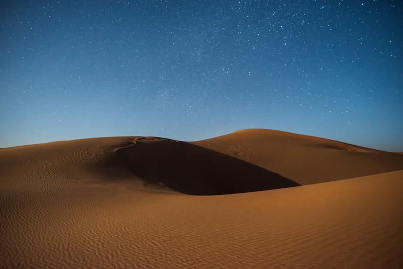 Dunes of the Sahara