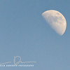 After Noon Moon