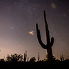 Cactus and Meteor