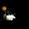 Fireworks-128